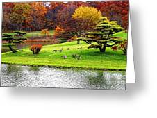 Japanese Island Fall Colors Greeting Card