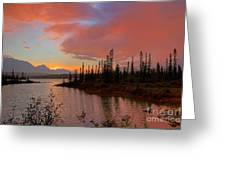 Jasper Glow Greeting Card