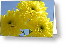 Yellow Trio Greeting Card