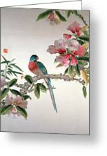 Jay On A Flowering Branch Greeting Card by Chinese School