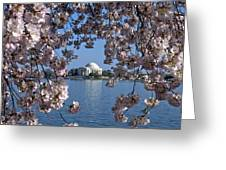 Jefferson Memorial On The Tidal Basin Ds051 Greeting Card by Gerry Gantt