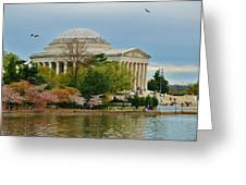 Jefferson Memorial, Springtime In Dc Is When Things Bloom, Like The Japanese Cherry Trees Greeting Card
