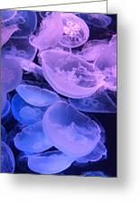 Jellyfish #3 Greeting Card