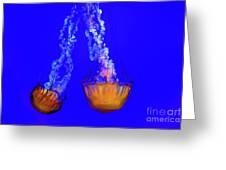 Jellyfish Art Greeting Card