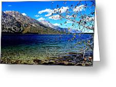 Jenny Lake Greeting Card by Carrie Putz