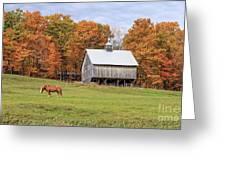Jericho Hill Vermont Horse Barn Fall Foliage Greeting Card