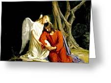 Jesus In Gethsemane Greeting Card