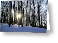 Jesyca's View Greeting Card