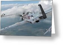 Jet Hunting Greeting Card