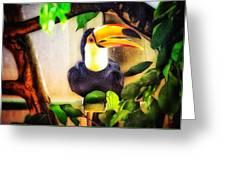 Jewel Of The Amazon Toco Toucan  Greeting Card