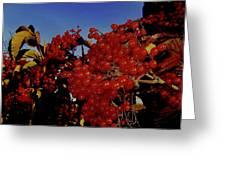 Jewels Of Autumn 4 Greeting Card