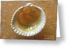 Jewels Of The Sea - Smoky Quartz Greeting Card