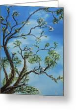 Jim's Tree Greeting Card