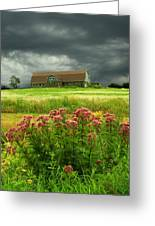 Joe Pye Weed And Barn Greeting Card