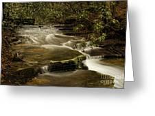 Joe's Creek Greeting Card