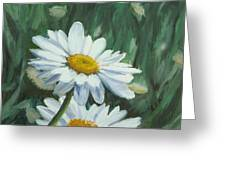 Joe's Daisies Greeting Card