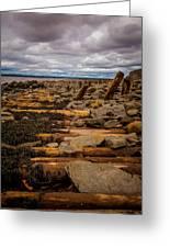 Joggins Fossil Cliffs Greeting Card