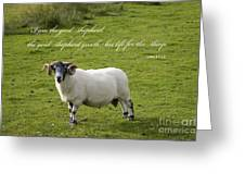 John 10v11 Greeting Card