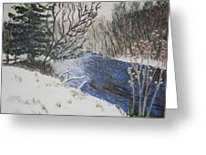 Johnson Vermont In Spring Snow Storm Greeting Card