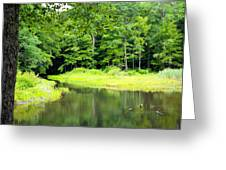 Jones Mill Run Creek Greeting Card