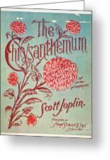 Joplin: Chrysanthemum Greeting Card