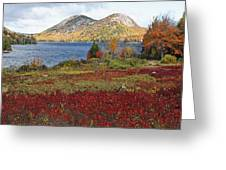Jordan Pond And The Bubbles Greeting Card