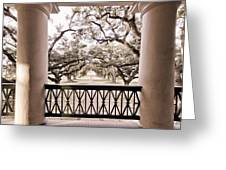 Josephine's View Of Oak Alley Plantation Greeting Card