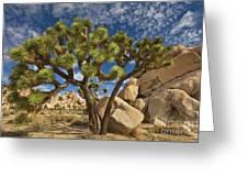 Joshua Tree And Blue Sky Greeting Card