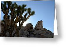 Joshua Tree California Greeting Card
