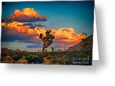 Joshua Tree In All Its Beauty Greeting Card