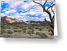 Joshua Tree National Park Landscape Greeting Card