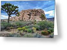 Joshua Tree National Park Summer Evening Greeting Card