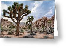 Joshua Tree Summer Monsoon Greeting Card