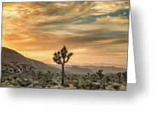 Joshua Tree Sunrise Greeting Card