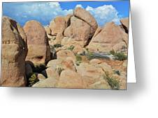 Joshua Tree White Tank Boulders Greeting Card