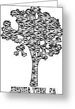 Joshua Tree Zebra Stripes Greeting Card