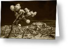 Joshua Trees And Boulders In Infrared Sepia Tone Greeting Card