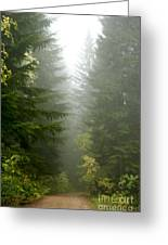 Journey Through The Fog Greeting Card