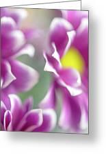 Joyful Sisters. Gentle Floral Macro Greeting Card
