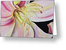 Jubilant Lily Greeting Card