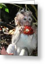 Juicy Fruit 1 Greeting Card