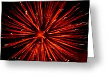 July 4 Fireworks Greeting Card