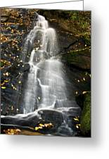 Juney Whank Falls Greeting Card