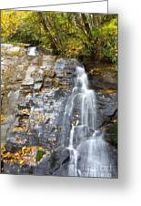 Juney Whank Falls In Nc Greeting Card
