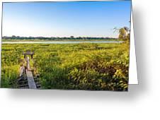 Jungle And Lake Greeting Card