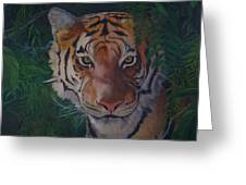 Jungle Eyes Greeting Card