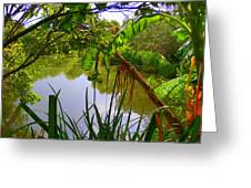 Jungle Garden View Greeting Card