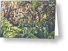 Jungle  Greeting Card