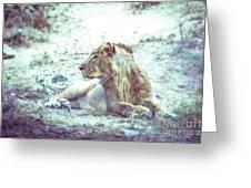 Jungle King Greeting Card