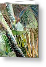 Jungle Light Greeting Card